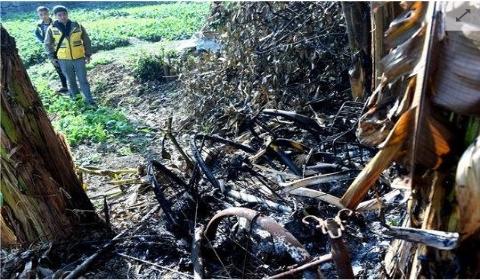 成都近百辆共享单车在野外被烧毁 警方介入调查(图)